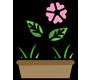 نهال گل و گیاه
